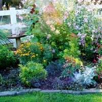 Country Garden Fragrance for Rainbow & RainMate
