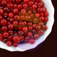 Cranberry Fragrance for Rainbow & RainMate