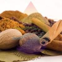 Cinnamon & Spice Fragrance for Rainbow and RainMate