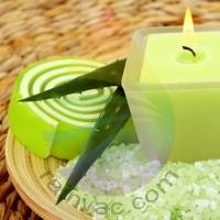 Juniper Aloe Fragrance for Rainbow & RainMate