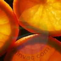Orange Rind Fragrance for Rainbow & RainMate