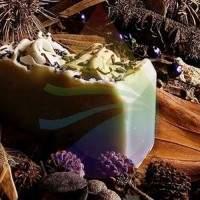 Patchouli Flower Fragrance for Rainbow & RainMate
